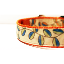 "3/4"" Dog Collar Orange, Blue, and Green Leaves on Pumpkin Orange Webbing FREE SHIPPING"