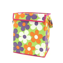 Organizing Tote Box - Lime Green with Flowers