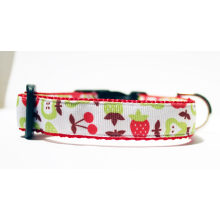 Dog Collar Mod Apples, Pears, Strawberries, and Cherries 3/4""