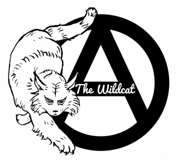 Support Seattle's Wildcat Space