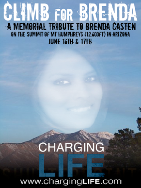 Climb For Brenda Casten a Memorial Tribute