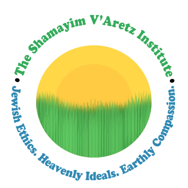 The Shamayim V'Aretz Institute