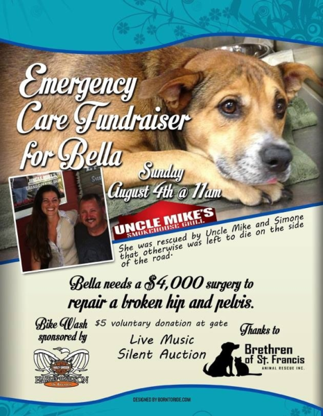 Bella - The Brethren of Saint Francis Animal Rescue