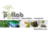 The Pot Lab