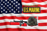 Marine Collectbles